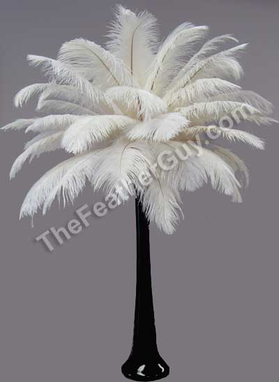 ostrich feather centre peice