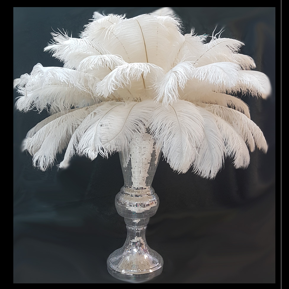 ostrich feather center piece with mirrored vase
