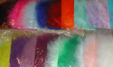 ostrich feather colours