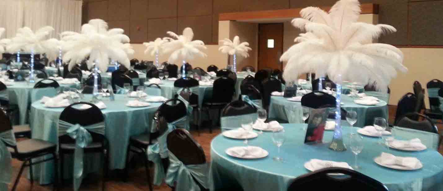 white ostrich feathers rented